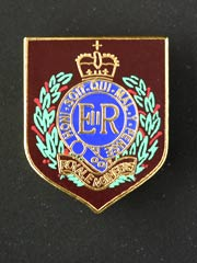 Royal Engineers lapel badge