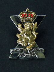 Royal Regiment of Scotland Deluxe Lapel Badge
